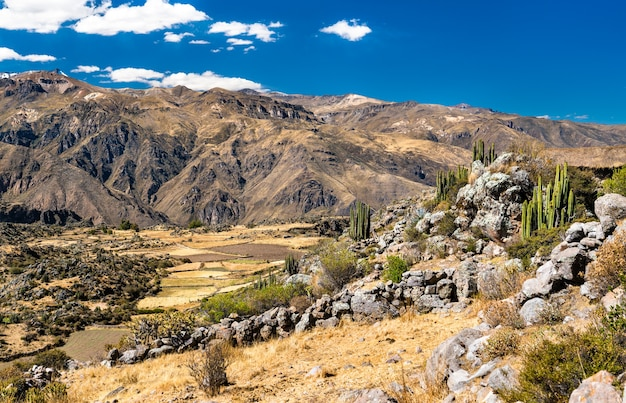 Paysage du canyon de colca au pérou, l'un des canyons les plus profonds du monde