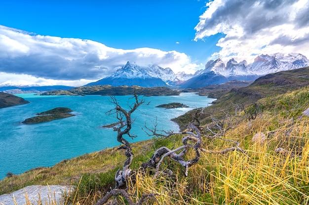 Paysage du lago del pehoe dans le parc national de torres del paine, cordillère, patagonie, chili.