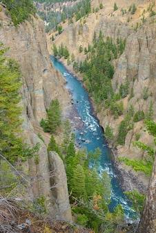Paysage du parc national de yellowstone