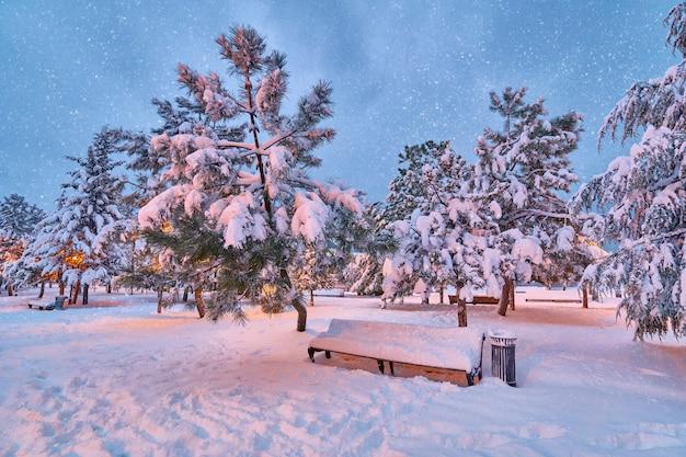 Paysage enchanteur d'hiver