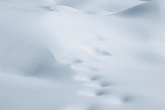 Paysage enneigé blanc d'hiver avec des congères fraîches.
