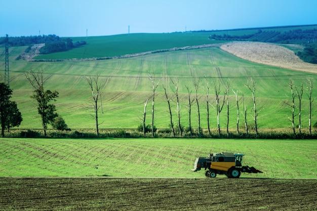 Paysage ensoleillé de champs verts