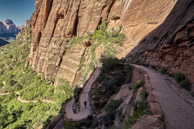 Paysage ensoleillé du parc national de zion situé dans l'utah, états-unis