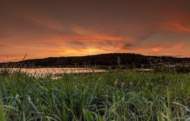 Paysage d'été au coucher du soleil avec la ligne de forêt de ciel coloré d'eau d'herbe verte au crépuscule