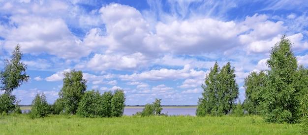 Paysage d'été. champs verts, arbres, nuages.