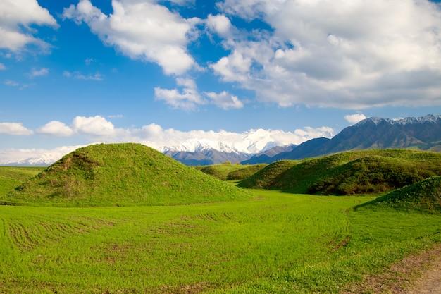 Paysage d'été, collines vertes et ciel bleu