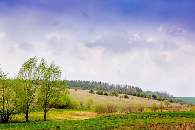 Paysage d'été dans la campagne avec des arbres sur le terrain et le ciel avec des nuages pluvieux