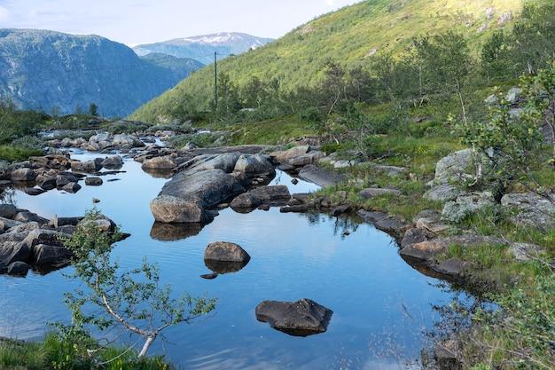 Paysage d'été du lac de montagne