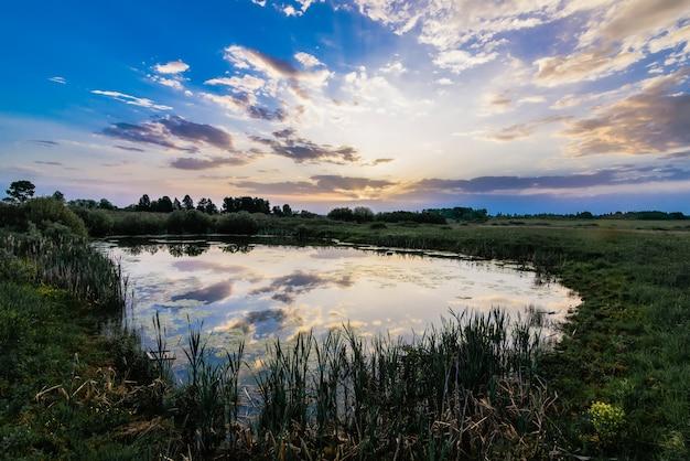 Paysage d'été avec un étang dans le champ avec un reflet du ciel dans l'eau le matin