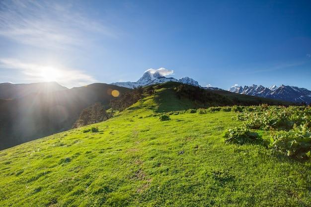 Paysage d'été panoramique avec colline verdoyante, pic enneigé de montagne et chemin de randonnée contre un ciel bleu clair. région de svanétie, géorgie. crête principale du caucase. vacances, randonnée, sport, loisirs