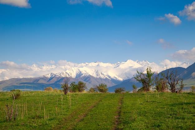 Paysage d'été avec une route rurale dans les montagnes
