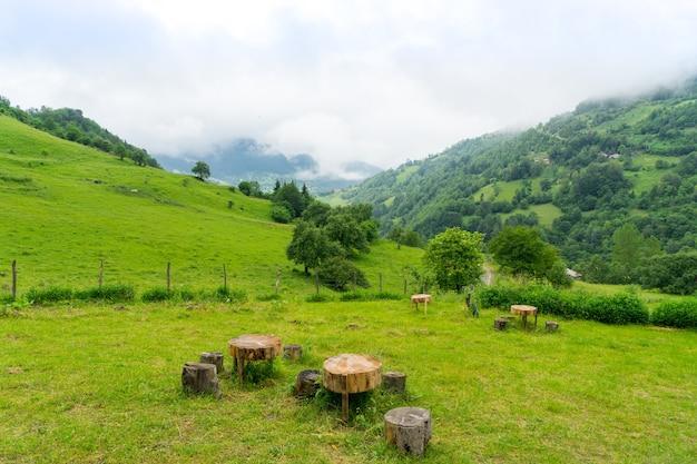 Paysage fantastique de forêt de montagne dans les nuages, le brouillard ou la brume. giresun highland's - turquie