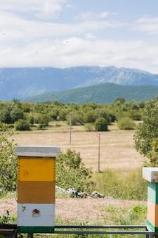 Paysage de la ferme de miel
