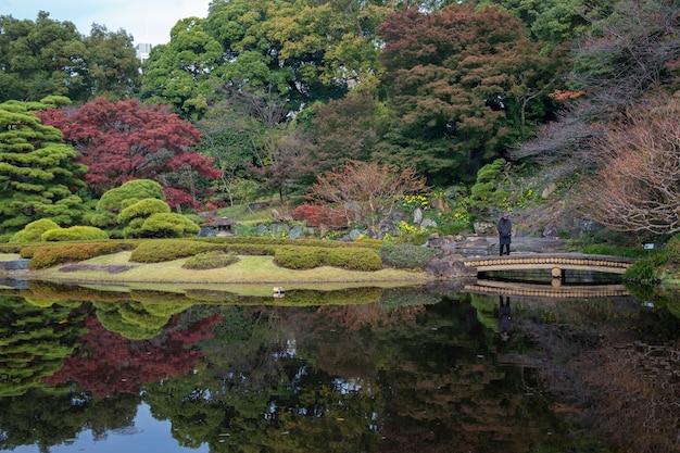 Paysage de feuilles d'automne avec jardin japonais au japon