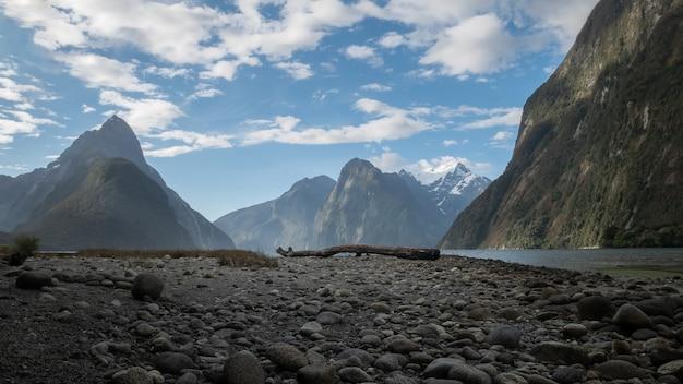 Paysage de fjord avec tronc d'arbre situé au milieu du cadre fiordland nouvelle-zélande