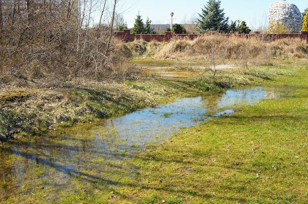 Paysage d'une flaque d'eau sur un champ herbeux avec des arbres bruns séchés sur le côté