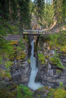 Paysage forestier du canada avec pont et forêt à l'arrière-plan, alberta
