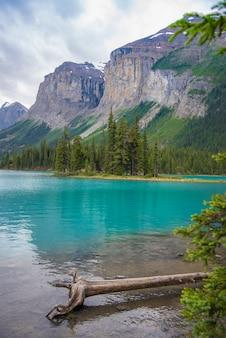 Paysage forestier du canada de spirit island avec la grande montagne en arrière-plan, alberta, canada.