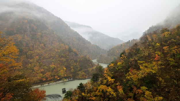 Paysage de forêt d'automne avec vue sur la vallée de la montagne brumeuse et la rivière au japon