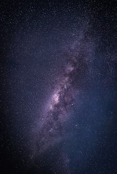 Paysage avec la galaxie de la voie lactée. ciel nocturne avec des étoiles et des arbres de la silhouette. photographie longue exposition.