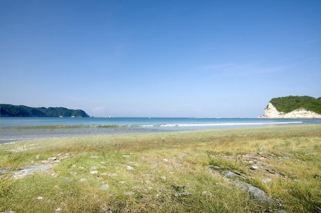 Le paysage de l'herbe verte sur la plage avec paysage marin