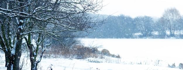 Paysage d'hiver avec des arbres au bord de la rivière pendant les chutes de neige. blizzard d'hiver