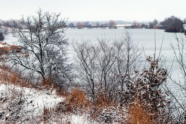 Paysage d'hiver avec des arbres au bord de la rivière