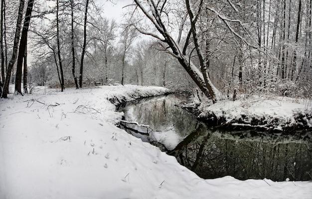 Paysage d'hiver avec des arbres enneigés et un ciel ensoleillé jaune