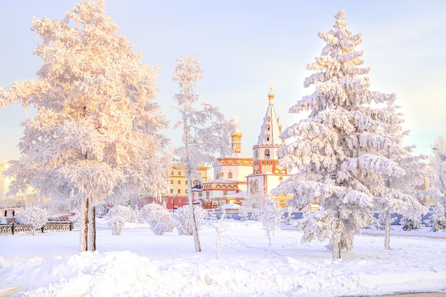 Paysage d'hiver des arbres de neige glacée dans le parc de la ville