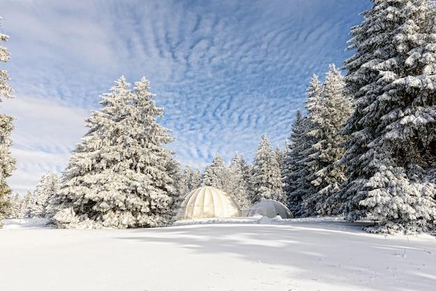 Paysage d'hiver avec cabanes