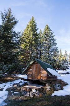 Paysage d'hiver avec une cabine
