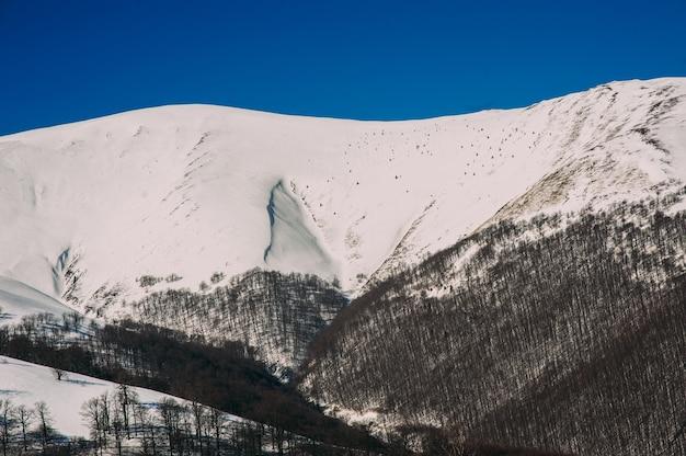 Paysage d'hiver des carpates