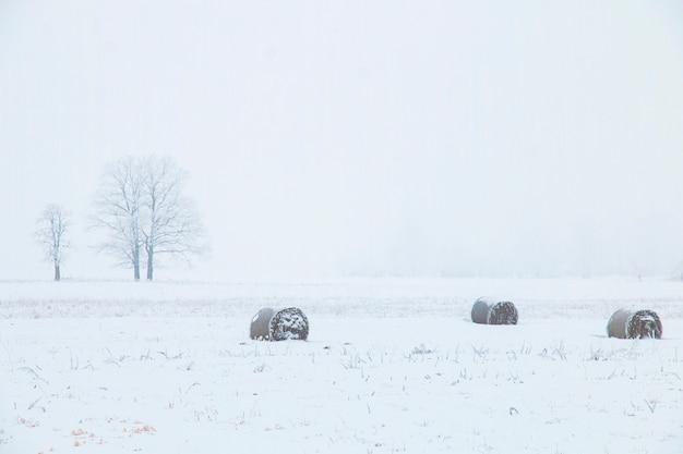 Paysage d'hiver, champ avec des meules de foin et un arbre solitaire
