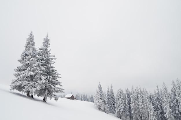 Paysage d'hiver avec des chasseurs de maisons dans les montagnes