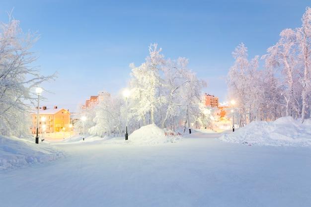 Paysage d'hiver city garden