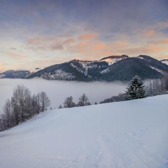 Paysage d'hiver dans les montagnes
