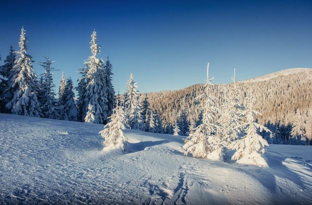 Paysage d'hiver fantastique et sentier usé menant au mont