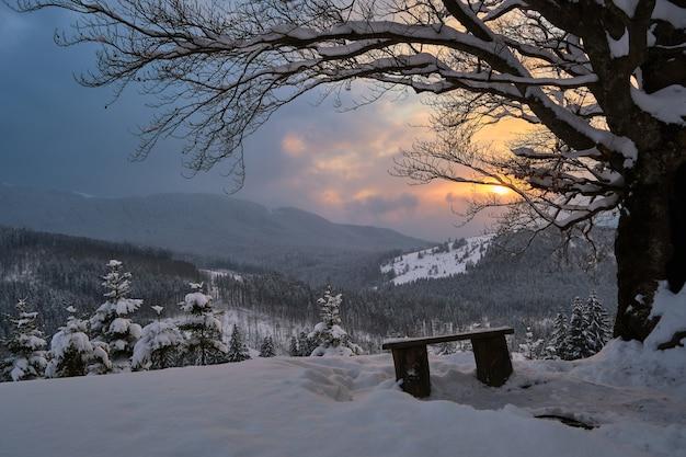 Paysage d'hiver de mauvaise humeur avec un arbre nu sombre et un petit banc en bois sur un champ de neige fraîchement tombée dans les montagnes hivernales par une froide soirée sombre.