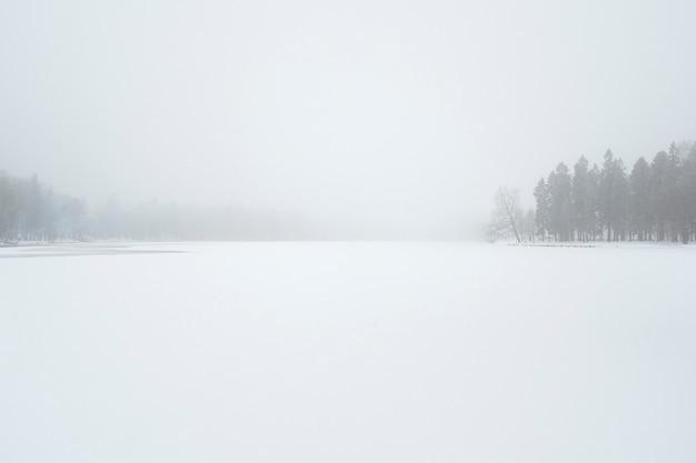 Paysage d'hiver minimaliste blizzard dans le parc d'hiver