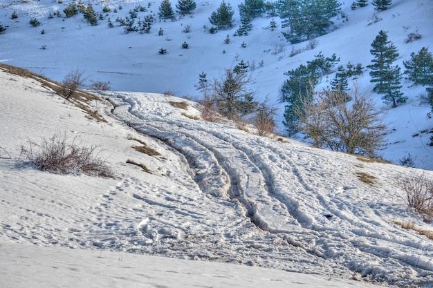 Paysage d'hiver avec neige et arbres montagne de neige.