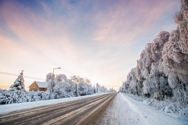 Paysage d'hiver pittoresque