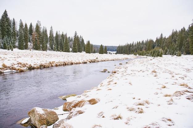 Paysage d'hiver près de modrava