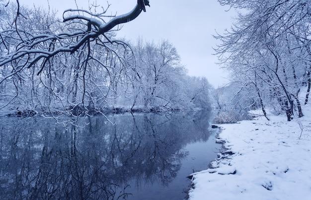 Paysage d'hiver avec rivière en forêt.