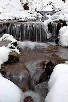 Paysage d'hiver avec la rivière