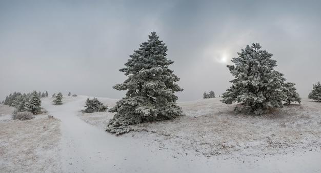 Paysage d'hiver surréaliste avec des chutes de neige