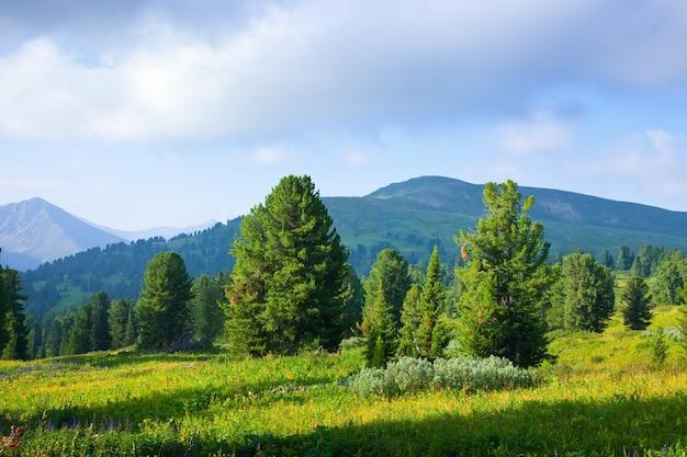 Paysage horizontal des montagnes