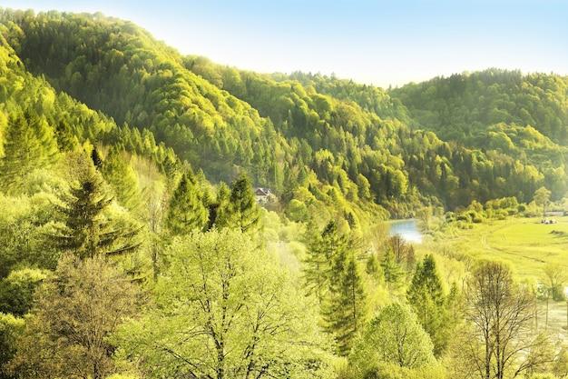 Un paysage idyllique de montagnes polonaises à muszyna