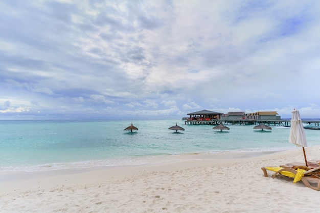 Paysage de l'île tropicale des maldives