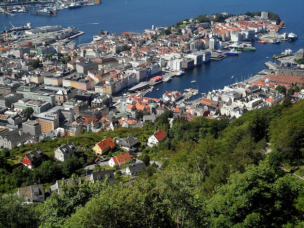 Paysage impressionnant du port de bergen et du quartier résidentiel à flanc de colline, norvège