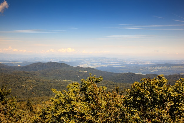 Paysage de kočevski rog, slovénie